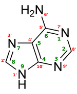 150px adenine structure chimique