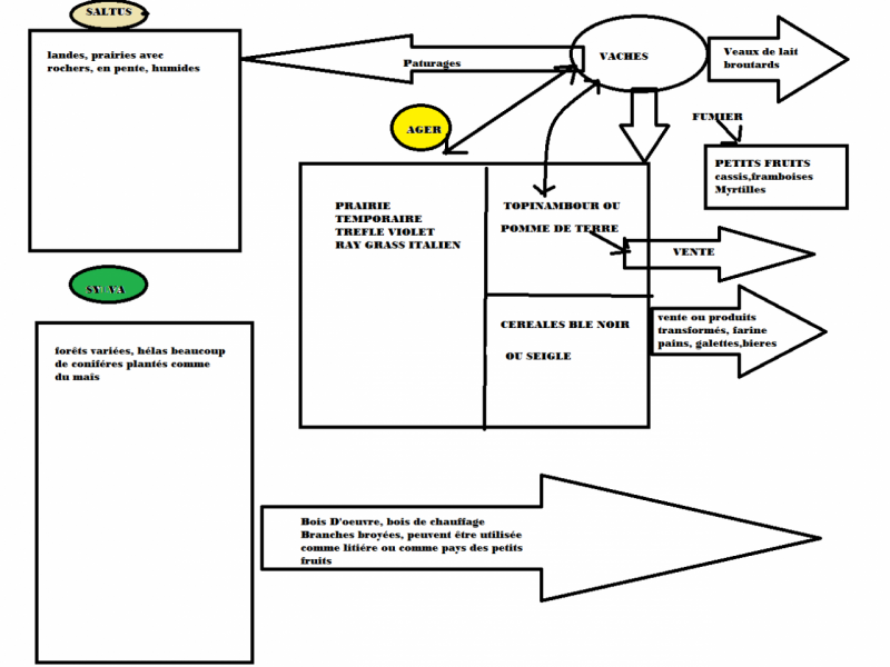 agro-ecosysteme-limousin-2.png