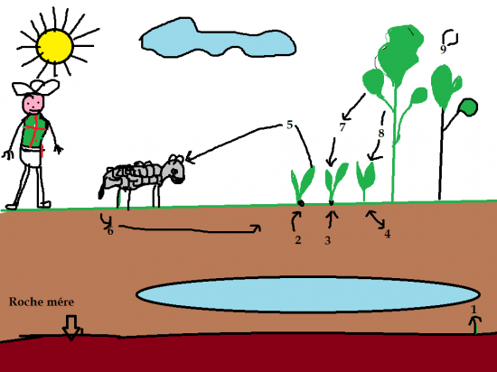 agroecosysteme2.png