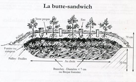 Butte sandwich007 2