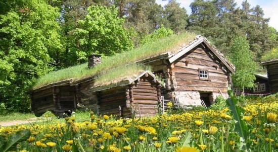 Maison de bois023