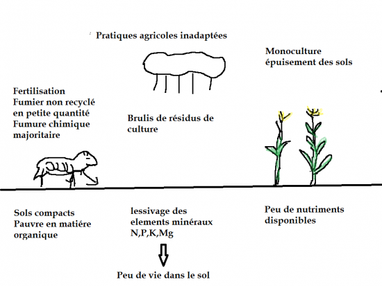 pratiques-agricoles-inadaptees.png